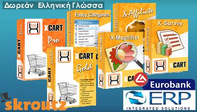 X-Cart Skin Design